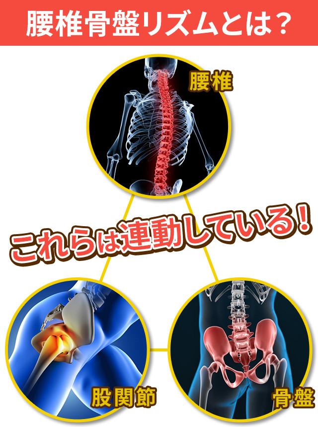 腰椎骨盤リズム